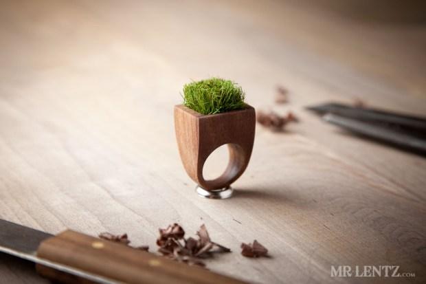 Grass ring.