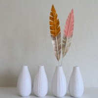 feathers-1