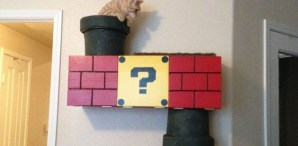 Homemade Super Mario Bros Cat Climber