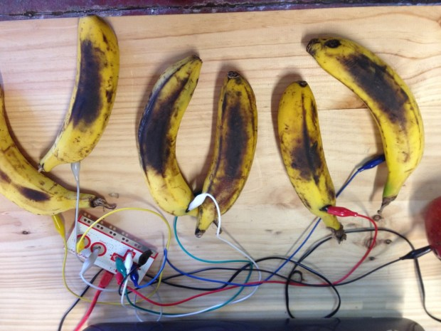 Makey Makey banana piano shows some use!