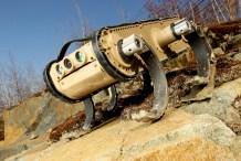 Rockstar Robots: Boston Dynamics' Crazy-Legged RHex