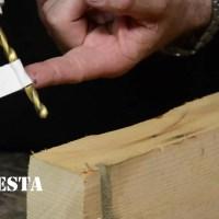 DiResta_2