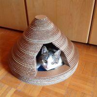cathouse-cardboard