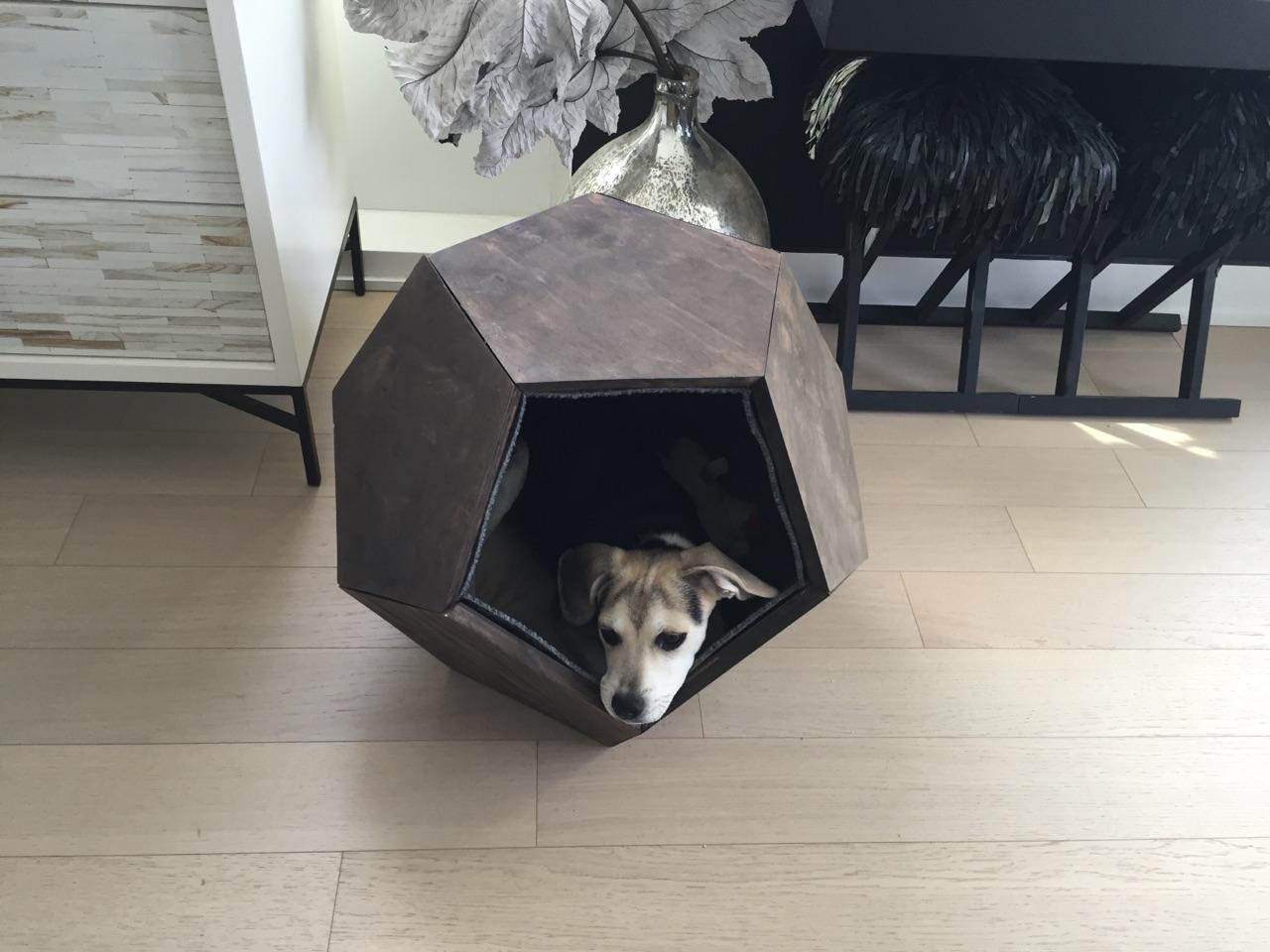 Dog House 7 Diy Dog Houses To Shelter Your Furry Friends Make