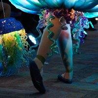 mfashion jellyfish justin poulsen