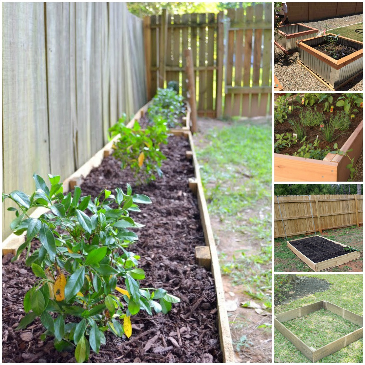 Plant Bed 20 Brilliant Raised Garden Bed Ideas You Can Make In A