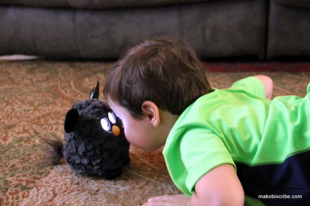 Playing with furby