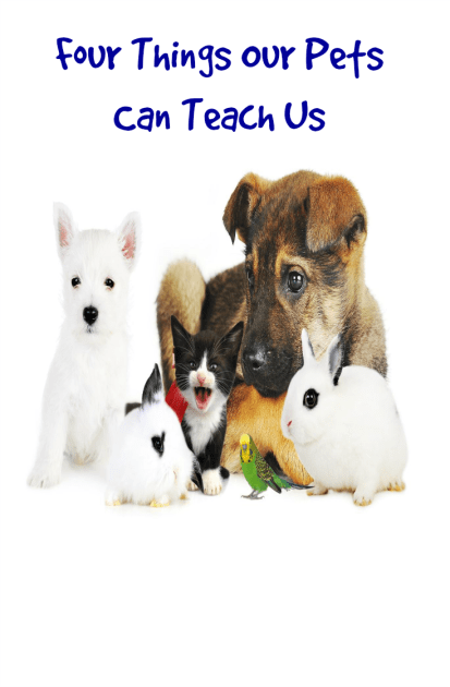 Four Things Our Pets Can Teach Us