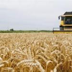 Asaja cree que la propuesta del Govern que regula las infraestructuras en las explotaciones agrarias es perjudicial