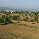 El Pla de Mallorca en situación de alerta por sequía