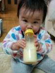 11ヶ月の娘が遂に母乳を卒乳。7日間の進め方とその方法