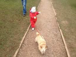 Walking Homily