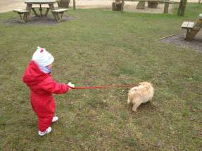 Not sure exactly who is walking who!