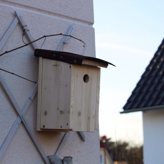 Nistkasten Höhlenbrüter Gartevögel Vogelhaus
