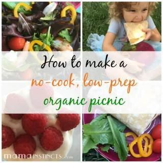 Want to have a last minute healthy picnic and don't know what to get? Check out these ideas for a no-cook, low-prep organic picnic!