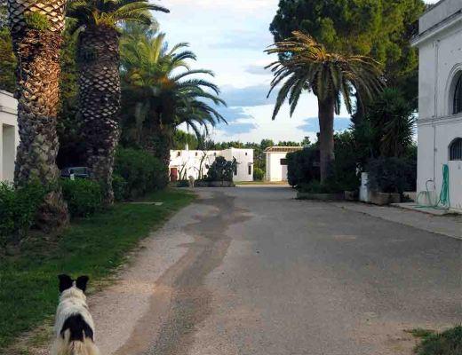 italie blog 4