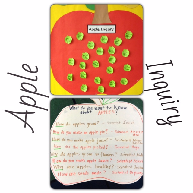 Apple Inquiry