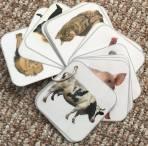 Kartičky – zvieratá