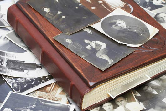 How to Map Your Ancestry - Family Tree Mamiverse