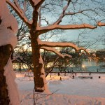 Riverside Park and the Hudson River in December. (Photo by Tom Powel)