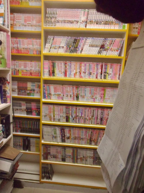 Here are some tall, rolling bookshelves inside a comic book stall.