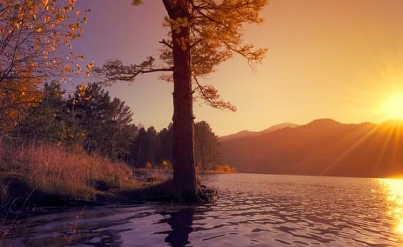 nature-72330_640