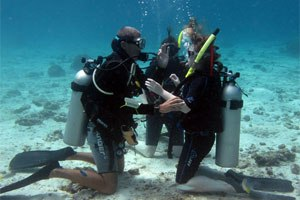 padi open water course subic bay