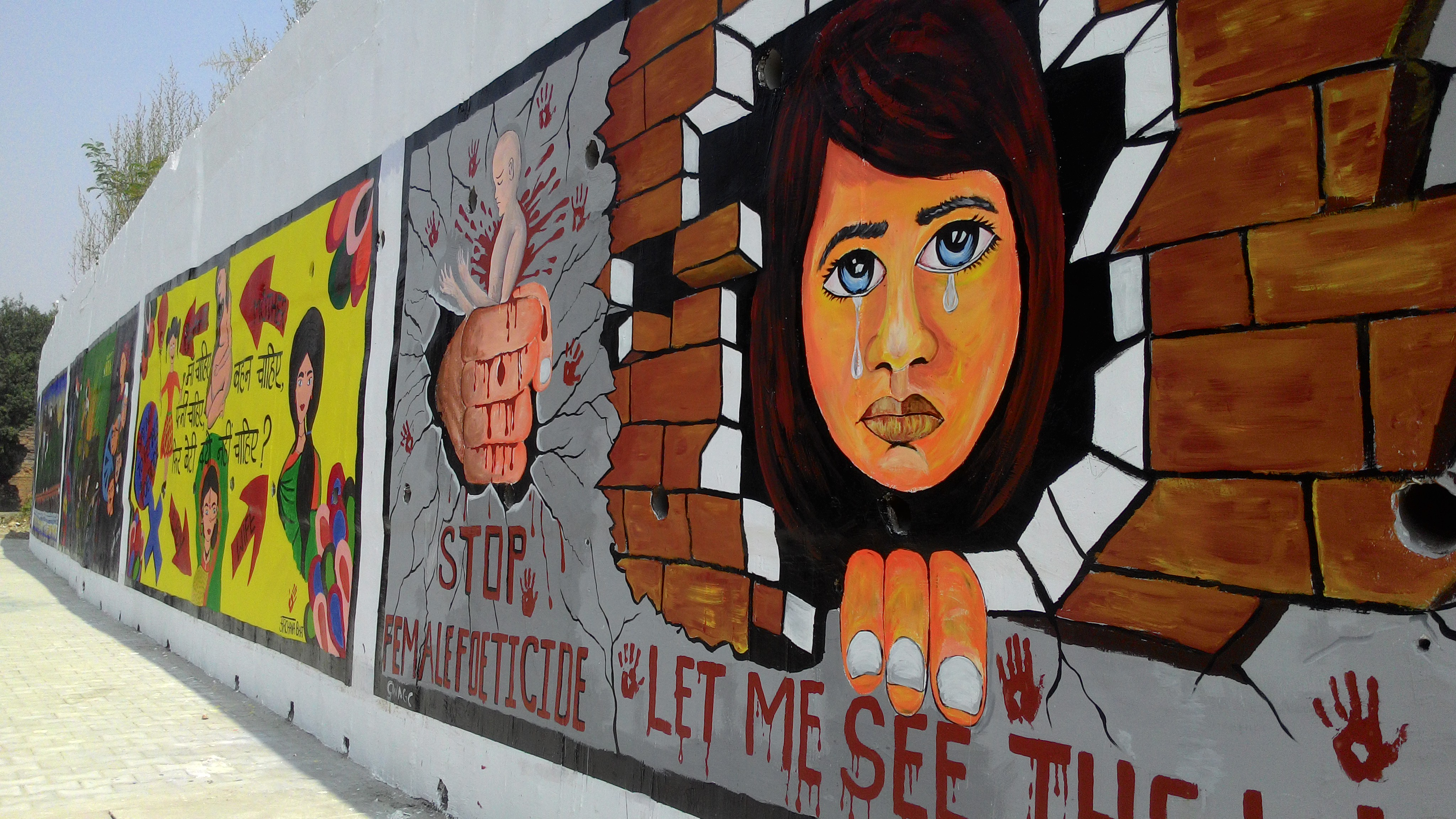 Travel Art Series Jammu Wall Paintings Voice Out Strong Social Messages Pendown Art Travel And Culture Blog