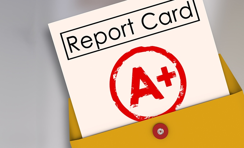 The Business Report Card Using Surveys to Achieve an A+ Performance