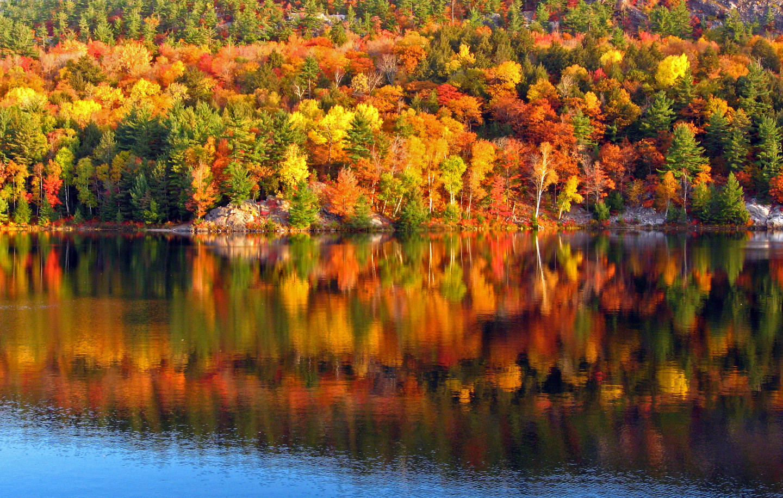 4k Fall Painting Wallpapers Nova Scotia Hello Canada Hello Nova Scotia