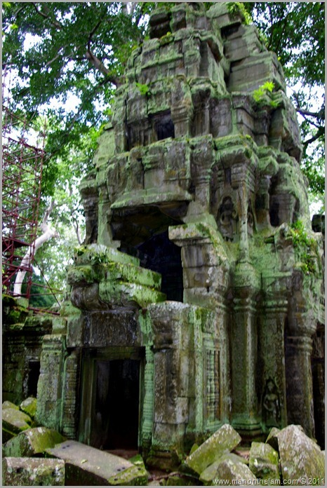 Ta Prohm temple with moss, Angkor, Siem Reap Province, Cambodia