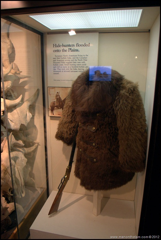Buffalo fur coat -- Head-Smashed-In Buffalo Jump, Alberta, Canada
