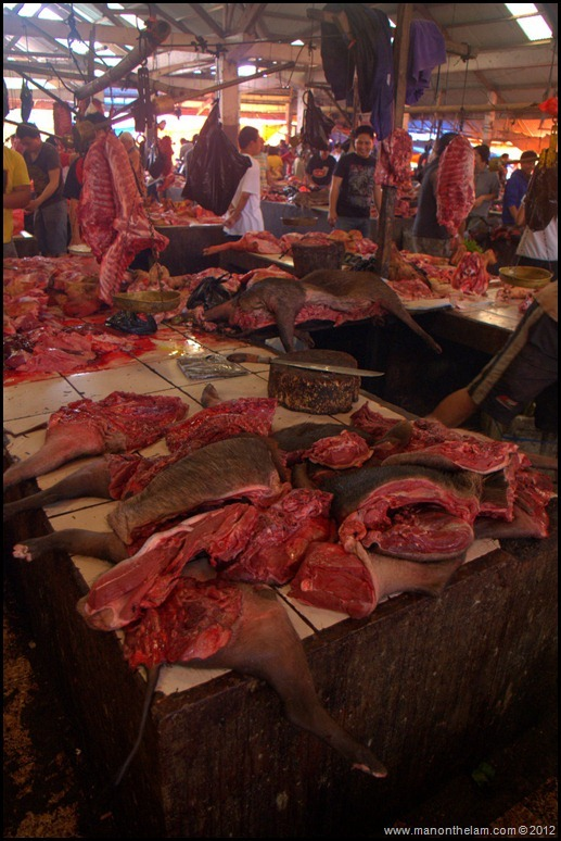Animals for sale at at Tomohon Traditional Market, Tomohon, Sulawesi, Indonesia