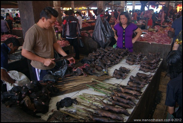 Preparing roasted rats for sale at Tomohon Traditional Market, Tomohon, Sulawesi, Indonesia