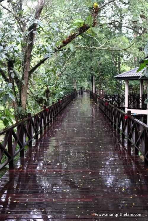 Mulu Marriott Resort and Spa  Gunung Mulu National Park Sarawak Borneo Malaysia 256