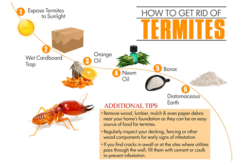 How To Get Rid Of Termites A Step By Step Termite Controlling Guide