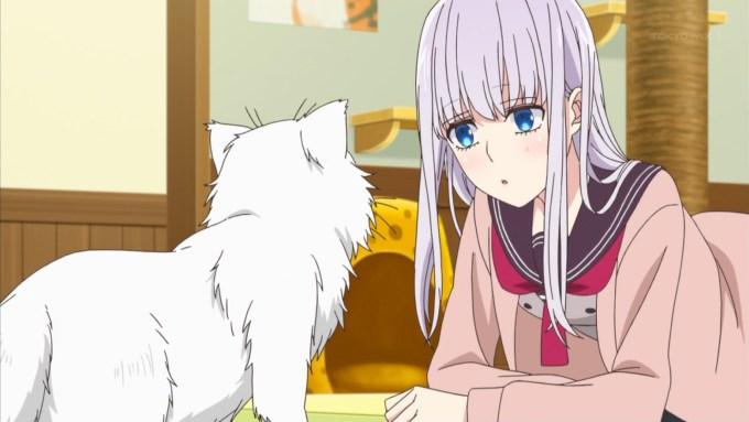 猫と遊ぶ五十嵐柊