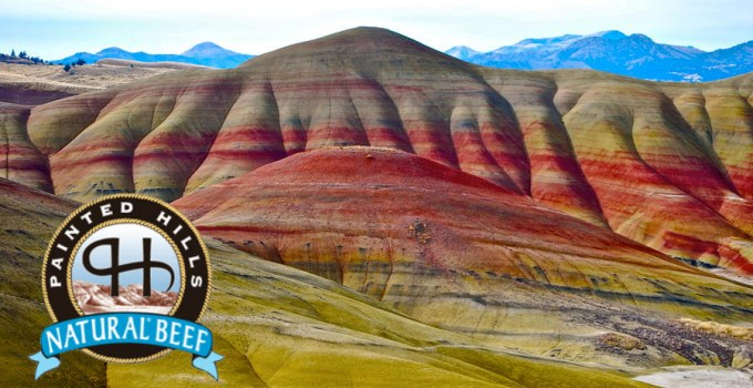 Painted Hills & Wine Sampling Today!