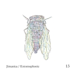 entomophonic_release