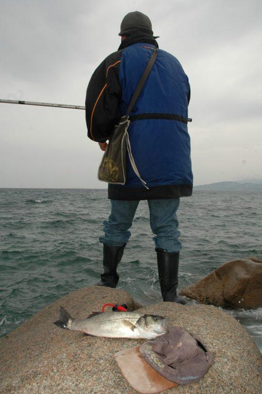 Con la bolognese si pesca solitamente a galla con l'aiuto del galleggainte per sostenere l'esca dal fondo