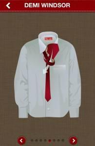 Noeud de cravate Demi Windsor
