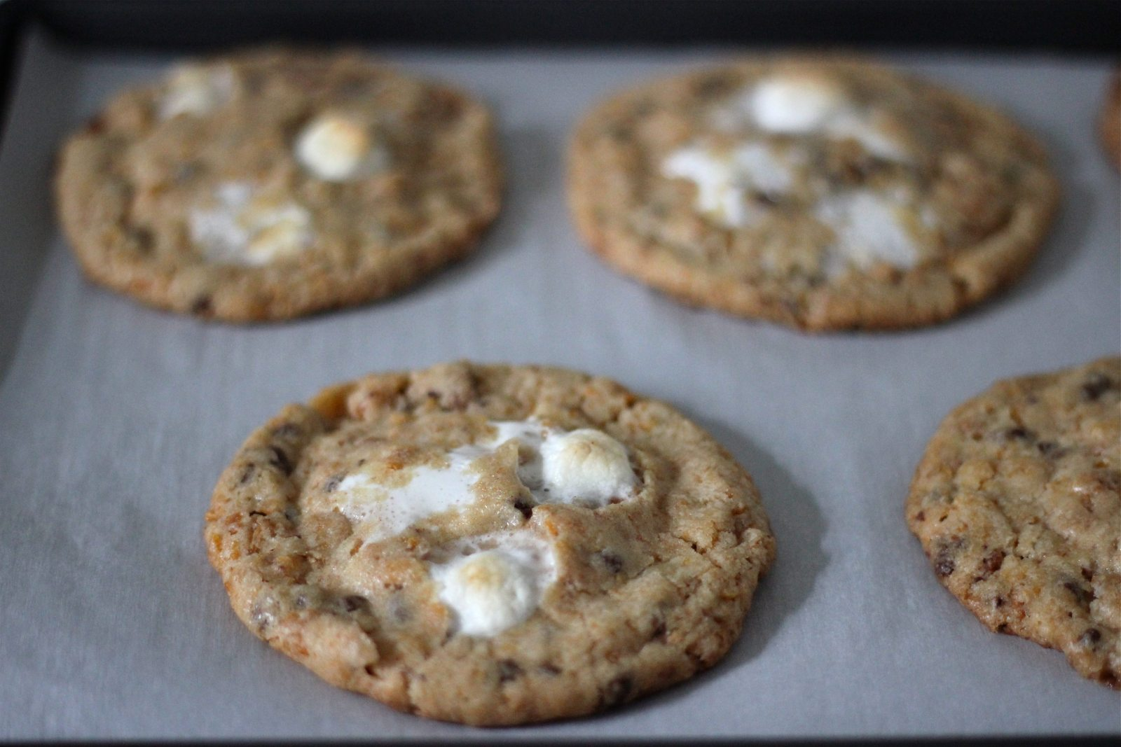 ... cornflake-chocolate-chip-marshmallow cookies} | margaret in the city