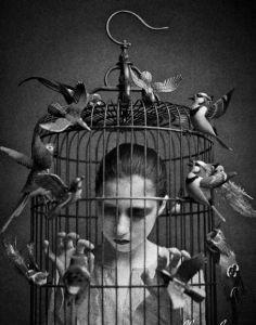 Bird Nightmare - Mick Ryan - Reprodução