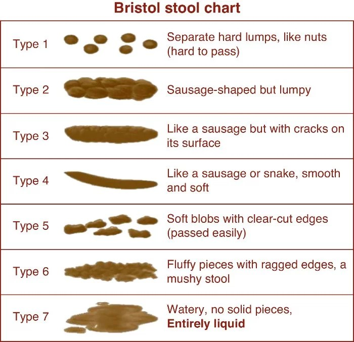 What is Your Poop Telling You? Maria Marlowe