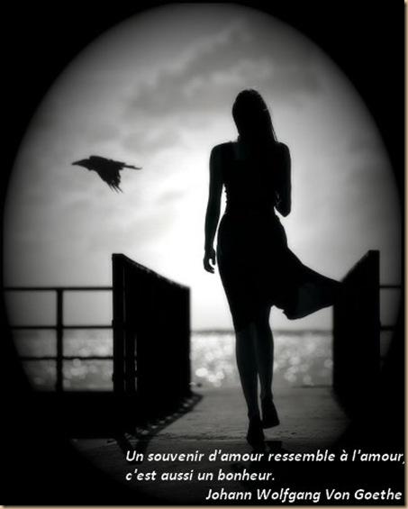 Souvenir D Amour