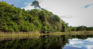Globo Repórter mostra diversidade do Pantanal Nordestino