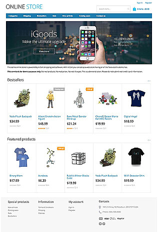 Electronic Store Website Templates  Ecommerce Examples