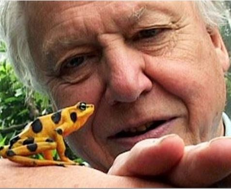 David Attenborough calls on scientific brains to stop global warming