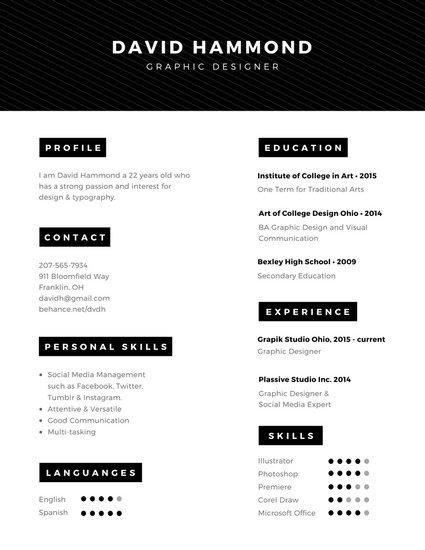 software professional minimal resume template