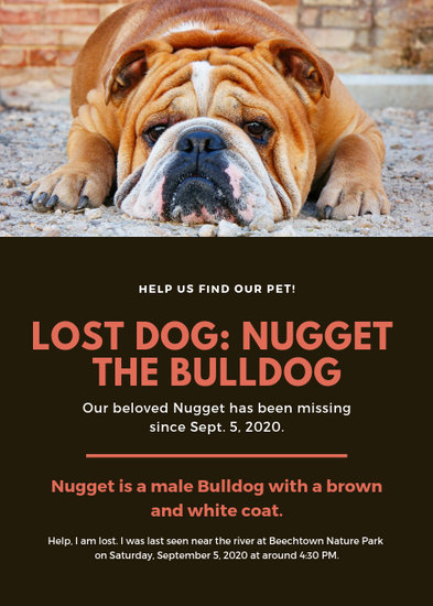 Orange Photo Lost Dog Flyer - Templates by Canva